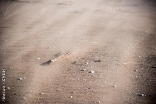 Wallpaper Mural closeup of sand blowing across beach in sandstorm
