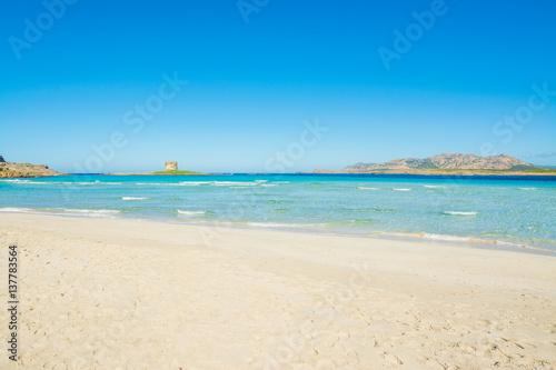 Foto op Aluminium Oceanië White sand in La Pelosa beach