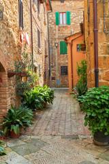 Fototapeta na wymiar Beautiful narrow alley with traditional historic houses at Pienza city