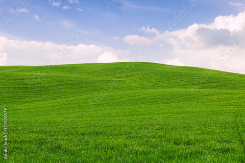 Tuscany landscape, beautiful green hills springtime Wallpaper Mural