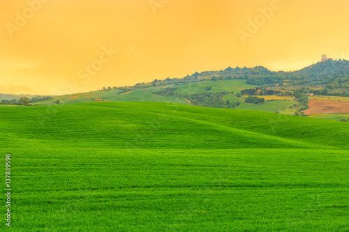 Poster Hill Tuscany landscape, beautiful green hills springtime
