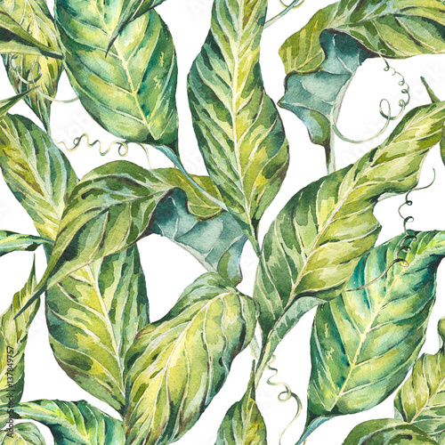 Fototapety, obrazy: Natural leaves exotic watercolor seamless pattern