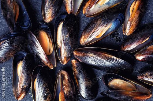 Texture of mussels