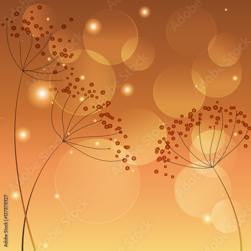Fotografie, Obraz  Template with umbelliferous - vector illustration