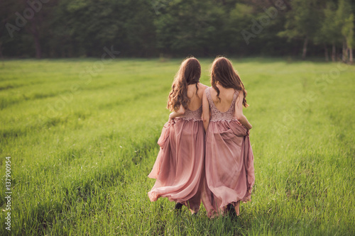 Photo  Beautiful happy young twins sisters in long evening dresses walking in green spring field in sunshine