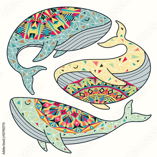 Colorful whales vector set