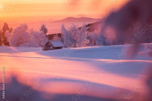 Poster Crimson Winterlandschaft im goldenen Sonnenlicht mit einer kleinen Holzhütte im Hintergrund