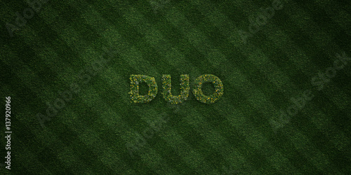 DUO - fresh Grass letters with flowers and dandelions - 3D rendered royalty free stock image Poster