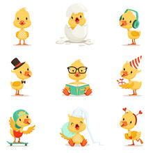 Little Yellow Duckling Differe...