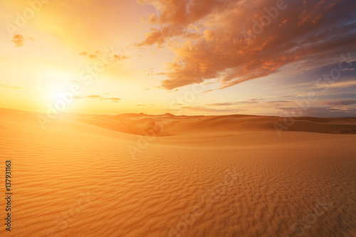 Foto op Canvas Zandwoestijn Beautiful views of the Gobi desert. Mongolia