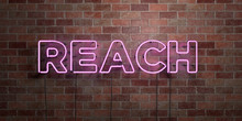 REACH - Fluorescent Neon Tube ...