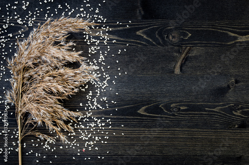 white sesame seeds in dark background