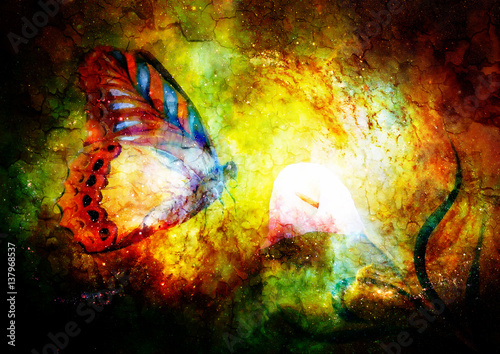Keuken foto achterwand Vlinders in Grunge flying butterfly with cala flower in cosmic space. Painting with graphic design.
