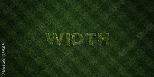Fotografija  WIDTH - fresh Grass letters with flowers and dandelions - 3D rendered royalty free stock image
