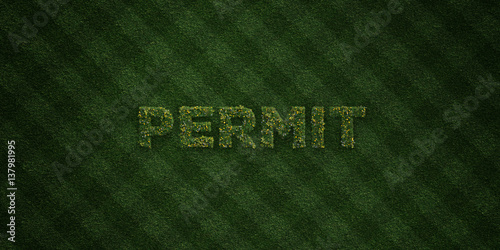Fotografía  PERMIT - fresh Grass letters with flowers and dandelions - 3D rendered royalty free stock image