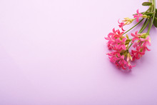 Bouquet Of Pale Pink Flowers As A Background