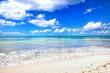 Caribbean sea. Tropical, exotic water landscape. Topical paradise. Ocean nature. Saona Island. Domincan Republic
