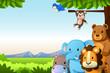Wild Animals Background