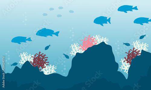 sylwetka-beaty-oceanu-z-rybami-i-rafa