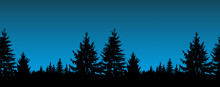 Silhouette Of Coniferous Trees On The Background Of Night Sky.