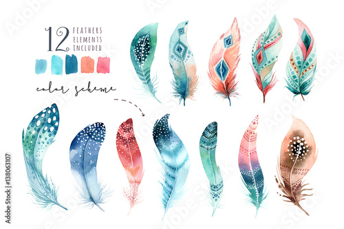 Photo Hand drawn watercolor paintings vibrant feather set