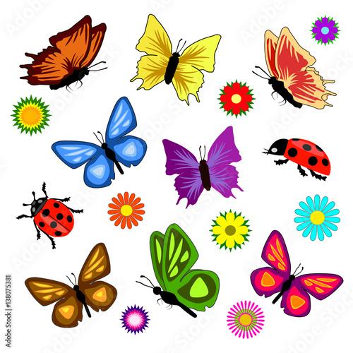 zestaw-kolorowych-owadow-na-bialym-tle