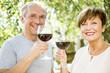 Happy senior couple having glass of red wine outdoors