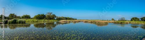 Wetland near city Fotobehang