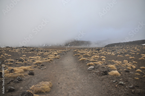 Photo  Mount Doom (Mount Ngaunuhoe) Walkway at Tongariro Alpine Crossing, Mount Ngaunuh