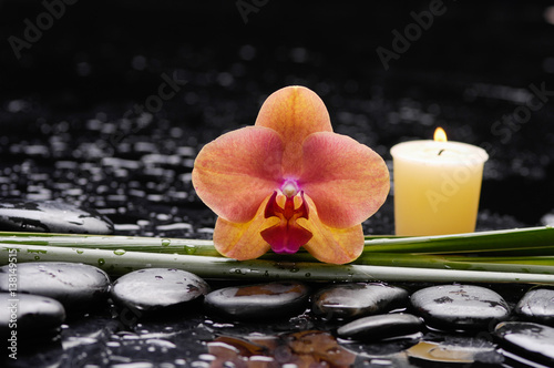 Poster Spa orchid with long leaf and stones, candle on wet background