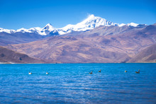 Beautiful Landscape Picture Of Yamdrok Lake In Tibet
