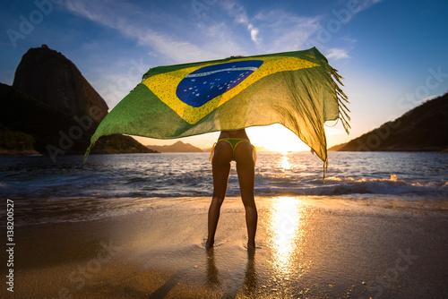 Fotografie, Obraz  Sexy Girl in Bikini Holding Beach Yoke With Brazilian Flag Waving in the Wind, w