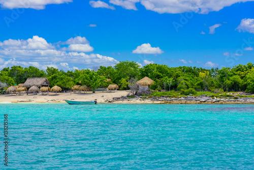 Foto op Plexiglas Caraïben Beautiful tropical landscape of the Atlantic Ocean palm against the skyPalm Ocean Sky