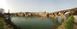 Albi et ses Ponts - Photo Panoramique