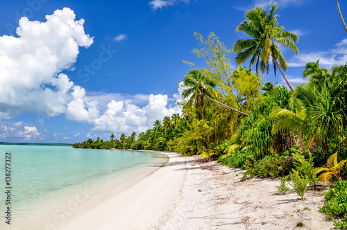 Foto op Plexiglas Caraïben Stunning view of a beach on One Foot Island, also called Tapuaetai, in the lagoon of Aitutaki, Cook Islands, in the South Pacific Ocean. Clear water, palm trees and white sand beach on a sunny day.