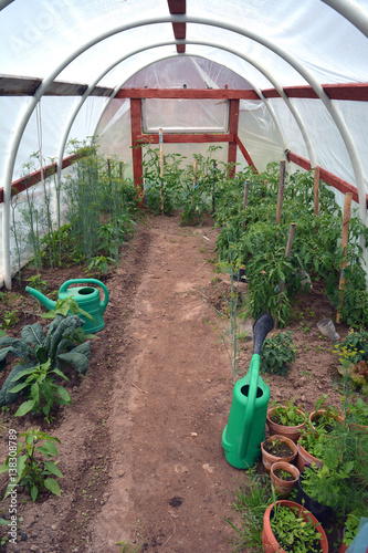 Plastic Greenhouse With Vegetables And Gardening Tools