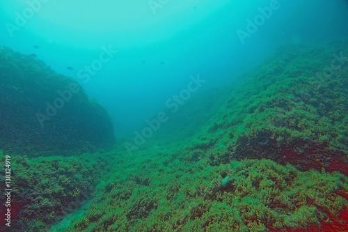 Spoed Foto op Canvas Turkoois Unter Wasser