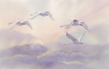 Obraz flying swans watercolor landscape