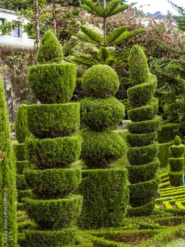 Cadres-photo bureau Jardin Botanical garden, sculpture garden, Portugal, Madeira, Funchal