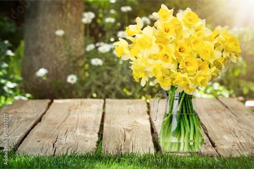 Deurstickers Narcis Spring.