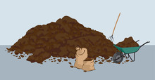 Heap Of Muck – Manure