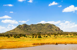 Tsavo East National park. Kenya.