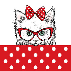 Cute kitten wearing glasses and a bow. Vector illustration. Beautiful cat.