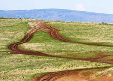 Tourist Road In The Ngorongoro Crater - Tanzania