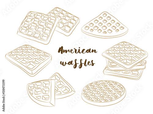 Fotografía  Vector illustration of various American waffles.