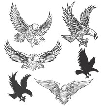 Illustration Of Flying Eagle Isolated On White Background. Vector Illustration.