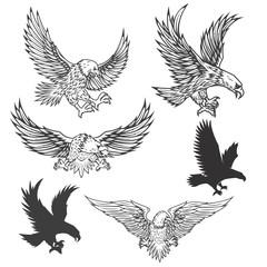 Ilustracija letećeg orla izoliranog na bijeloj pozadini. Vektorska ilustracija.