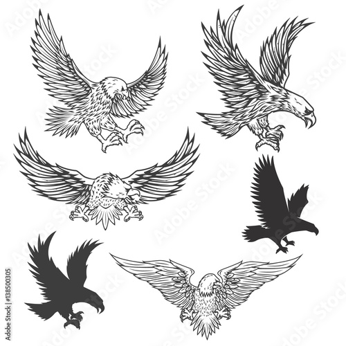 Illustration of flying eagle isolated on white background Wallpaper Mural