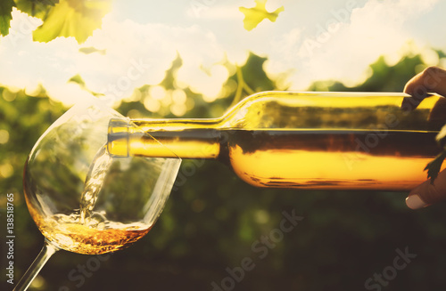 Pouring wine into glass on blurred nature background Canvas Print
