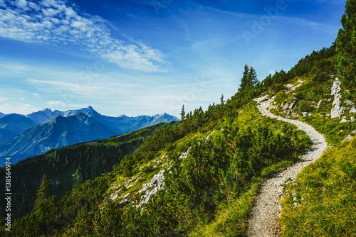Foto auf Gartenposter Gebirge Hiking trail through forested alpine peaks